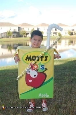 coolest-homemade-motts-juice-box-costume-12-21417177